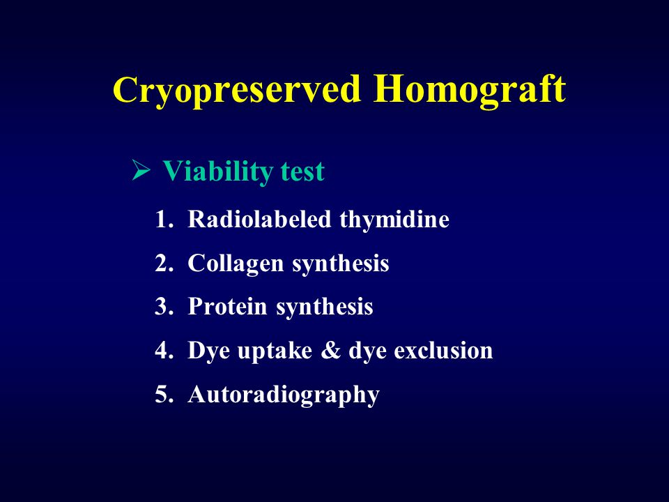 Cryopreserved Homograft