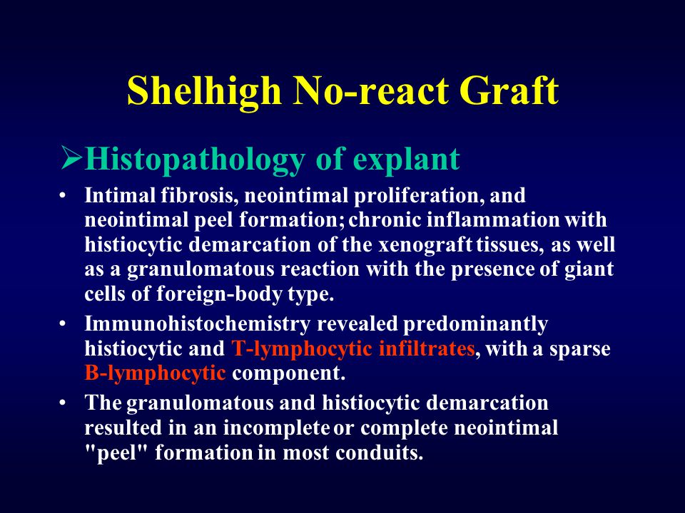 Shelhigh No-react Graft