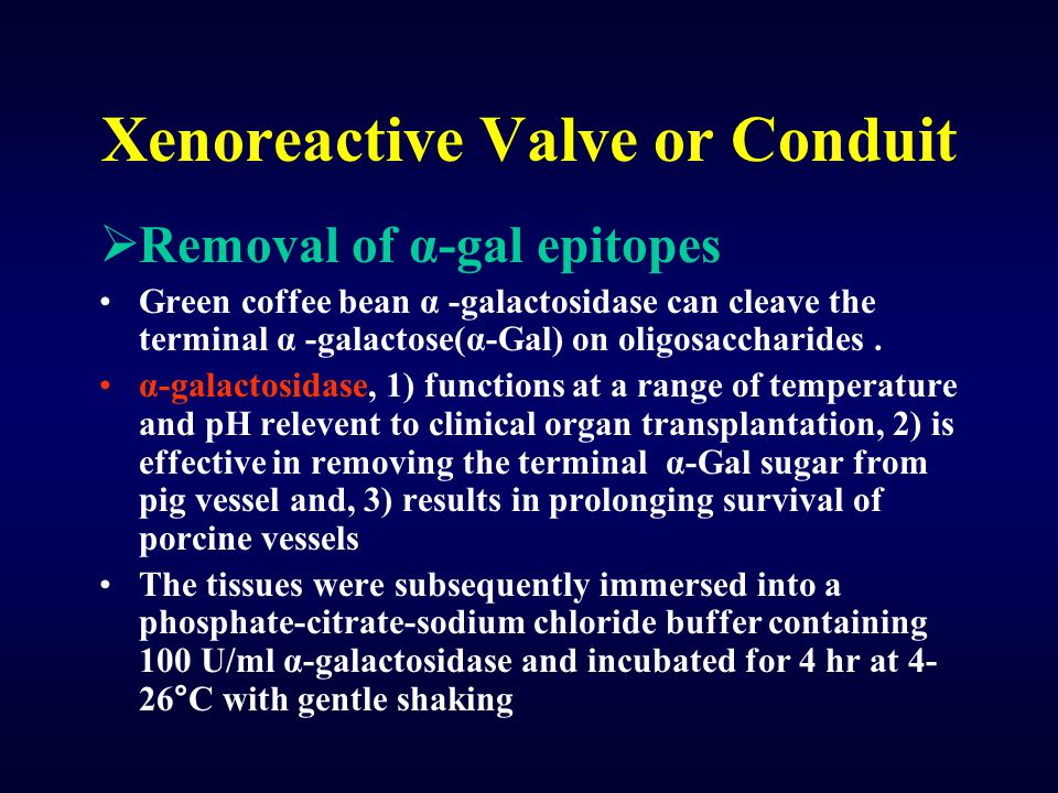 Xenoreactive Valve or Conduit