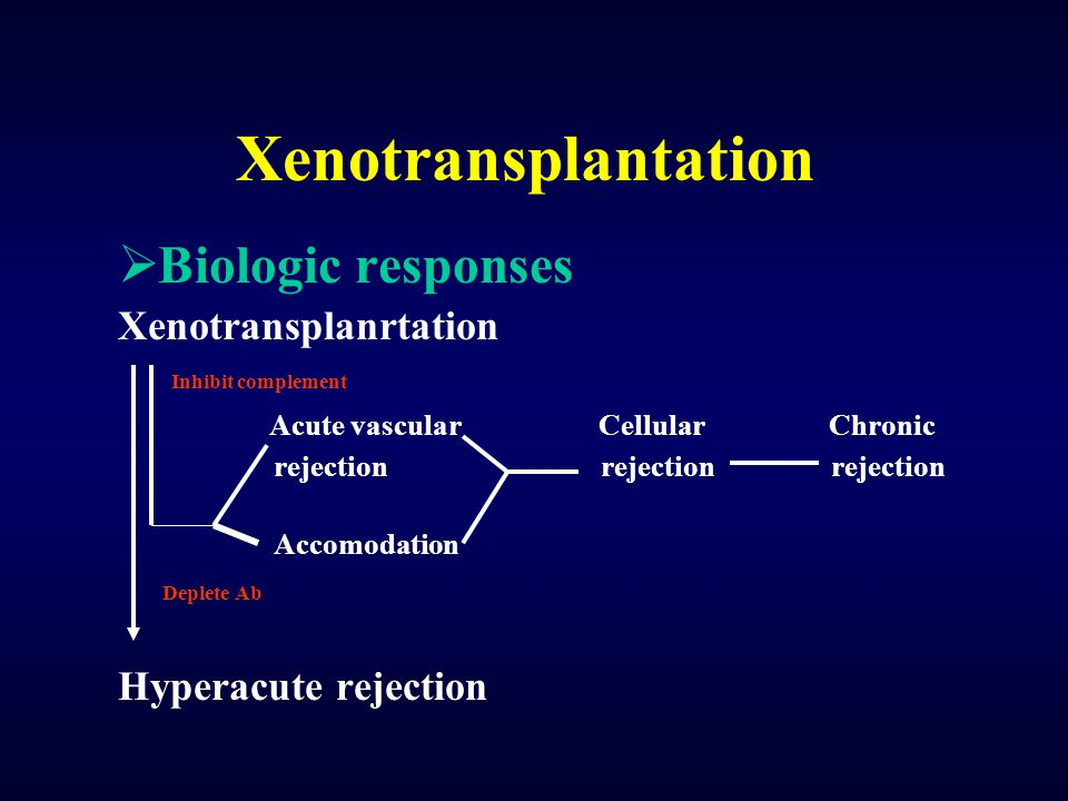 Xenotransplantation Biologic responses Xenotransplanrtation