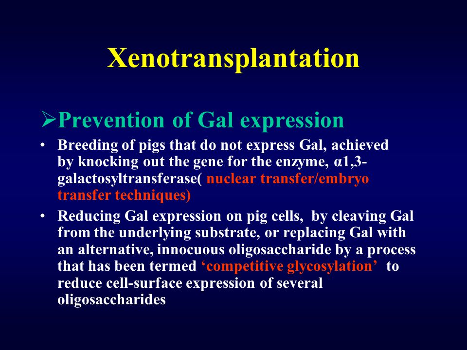 Xenotransplantation Prevention of Gal expression