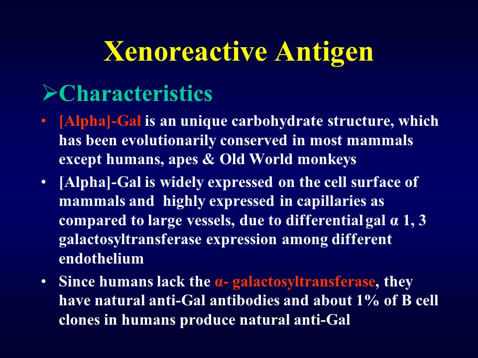 Xenoreactive Antigen Characteristics