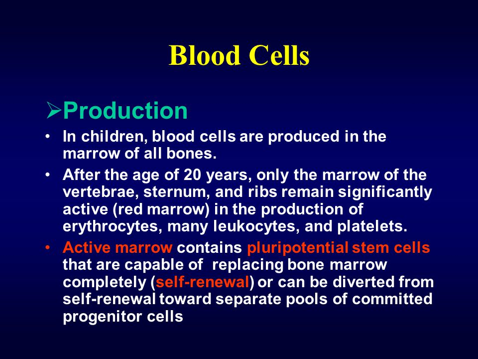 Blood Cells Production