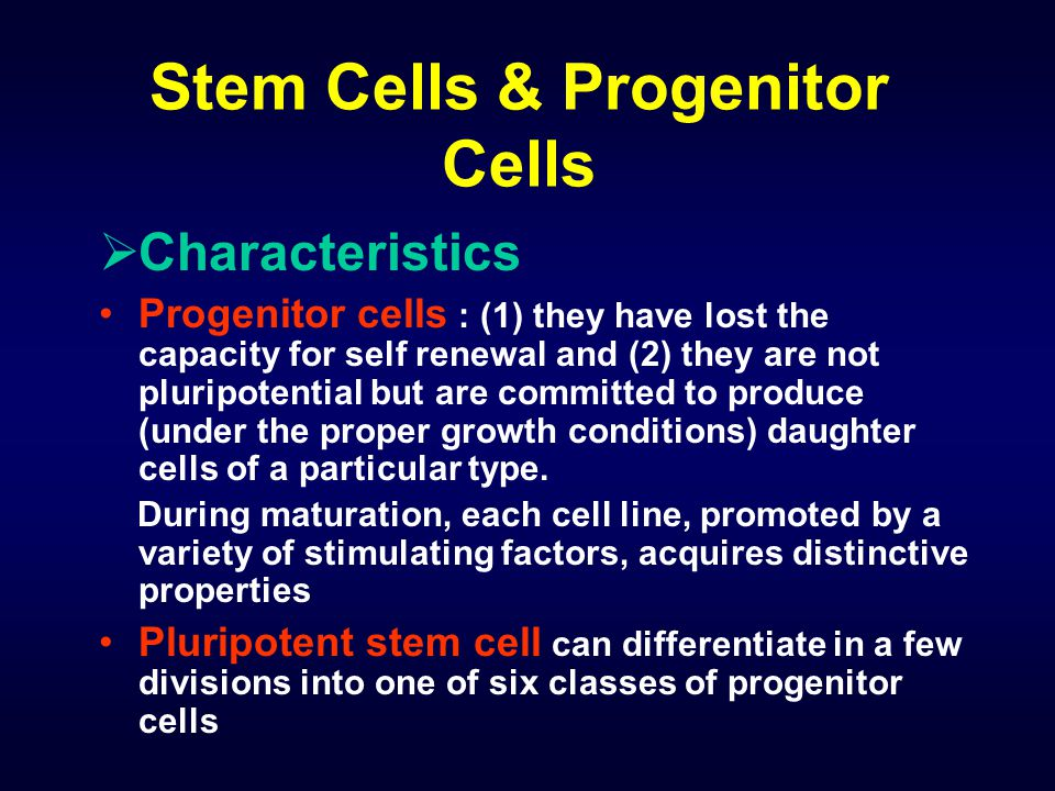 Stem Cells & Progenitor Cells