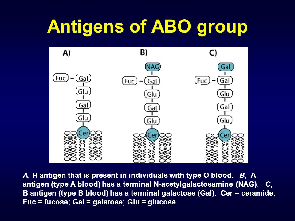 Antigens of ABO group