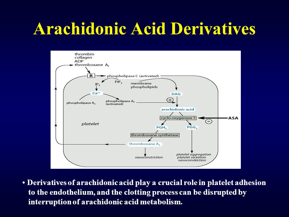 Arachidonic Acid Derivatives