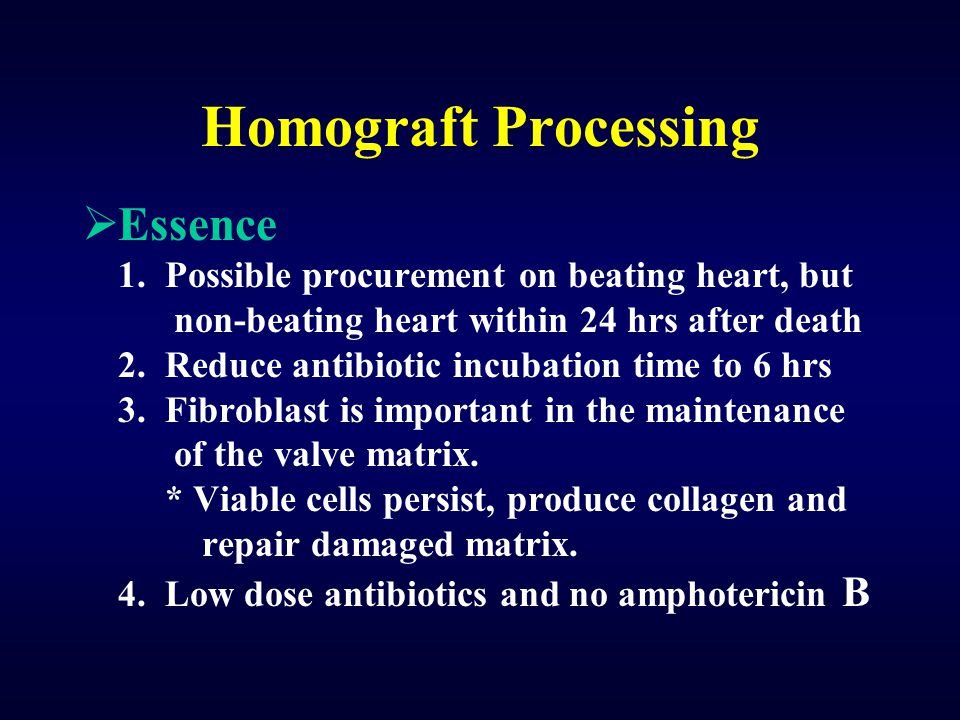 Homograft Processing Essence
