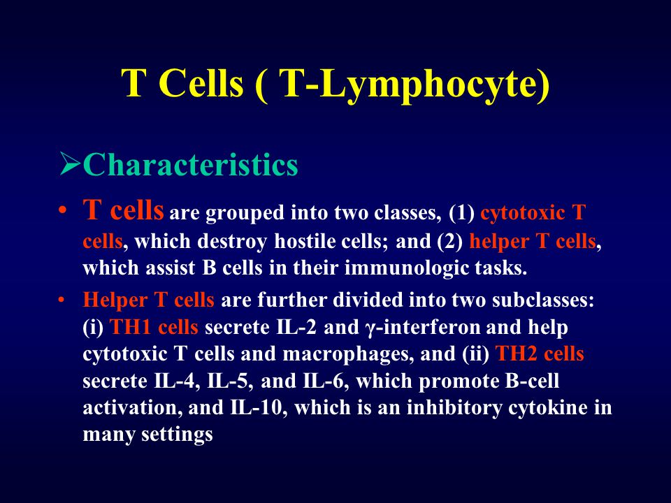T Cells ( T-Lymphocyte)