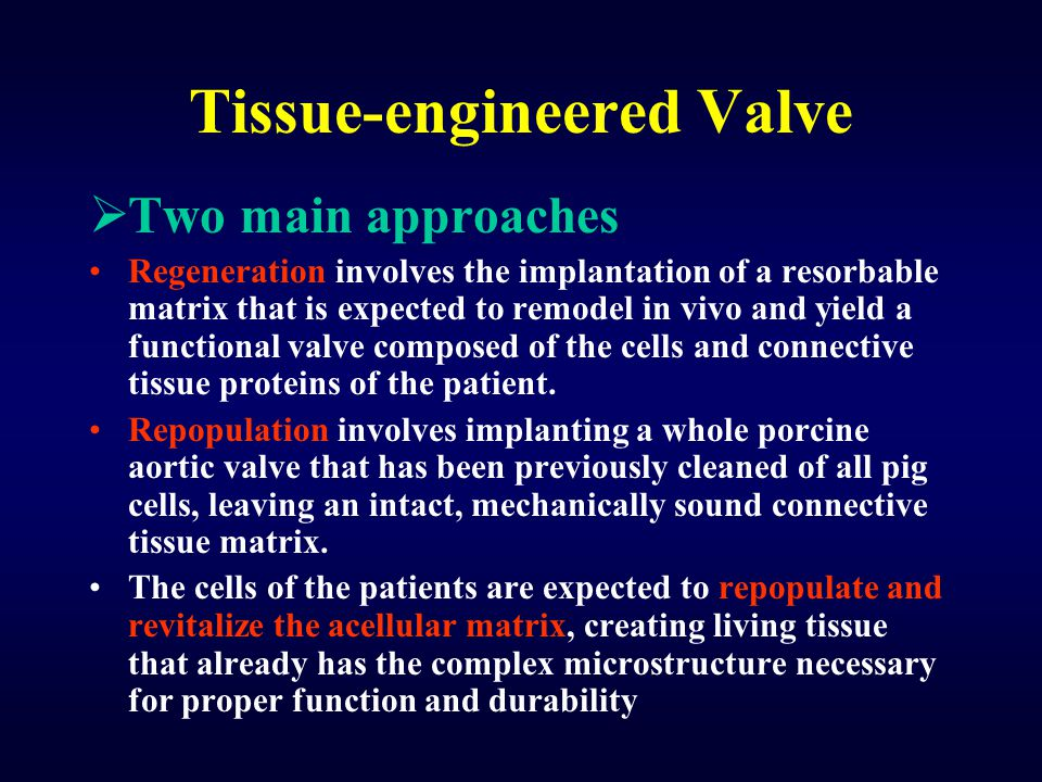 Tissue-engineered Valve