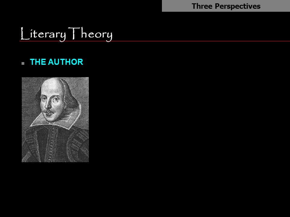 Literary Theory THE AUTHOR Three Perspectives Author is king