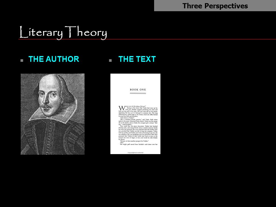 Literary Theory THE AUTHOR THE TEXT Three Perspectives