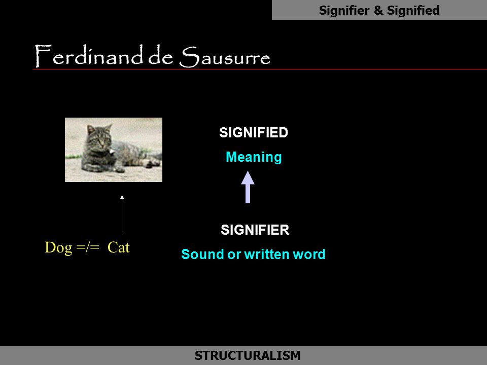 Ferdinand de Sausurre as Dog =/= Cat SIGNIFIED Meaning SIGNIFIER