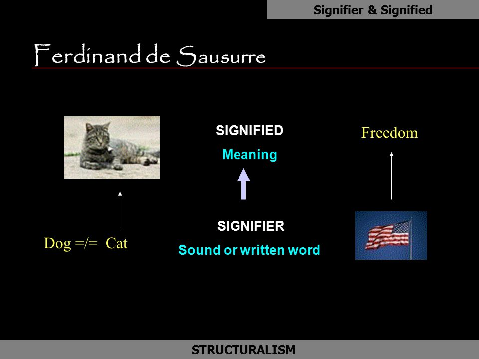 Ferdinand de Sausurre as Freedom Dog =/= Cat SIGNIFIED Meaning