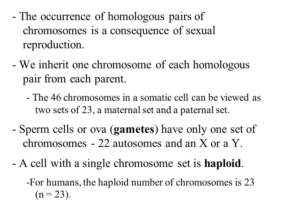 - We inherit one chromosome of each homologous pair from each parent.