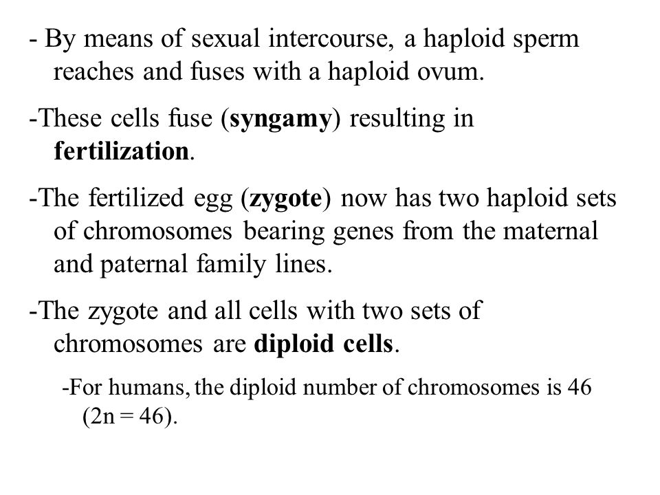 -These cells fuse (syngamy) resulting in fertilization.