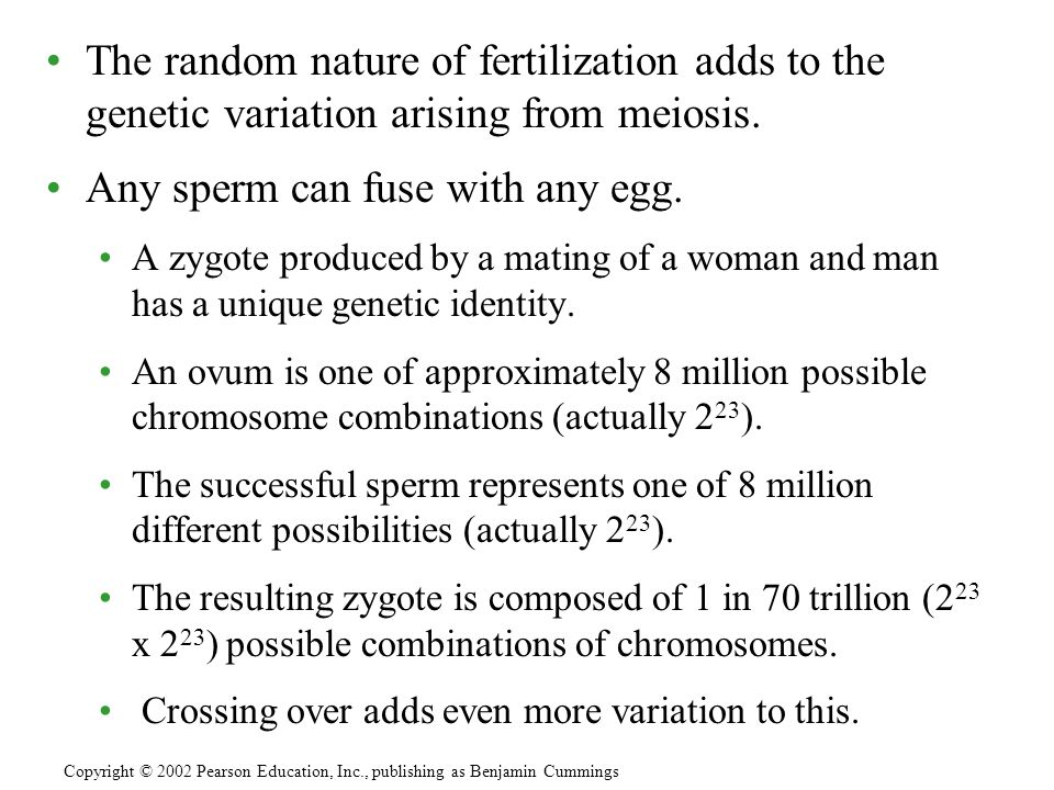 Any sperm can fuse with any egg.