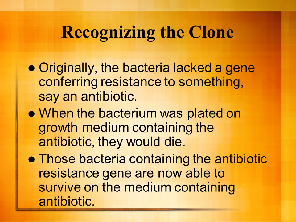 Recognizing the Clone Originally, the bacteria lacked a gene conferring resistance to something, say an antibiotic.