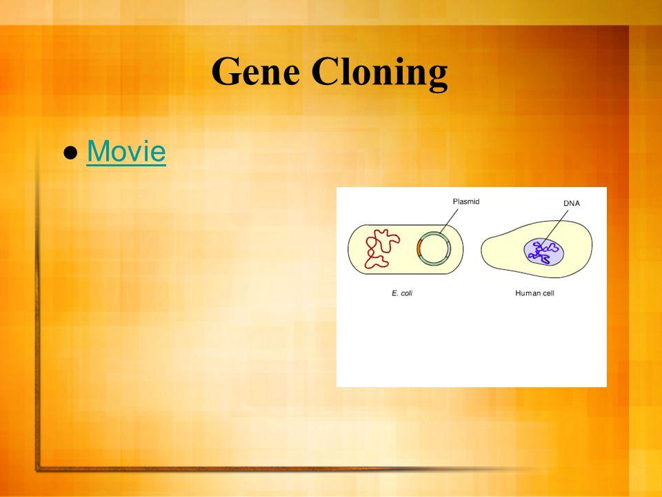 Gene Cloning Movie