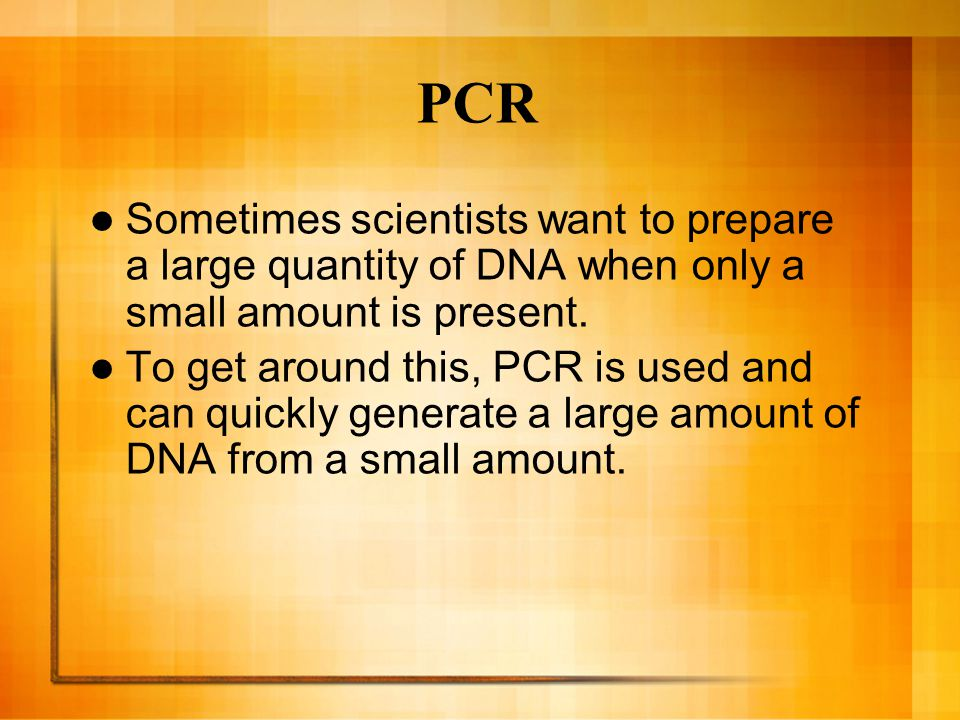 PCR Sometimes scientists want to prepare a large quantity of DNA when only a small amount is present.