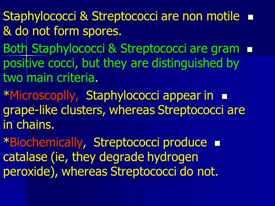 Staphylococci & Streptococci are non motile & do not form spores.
