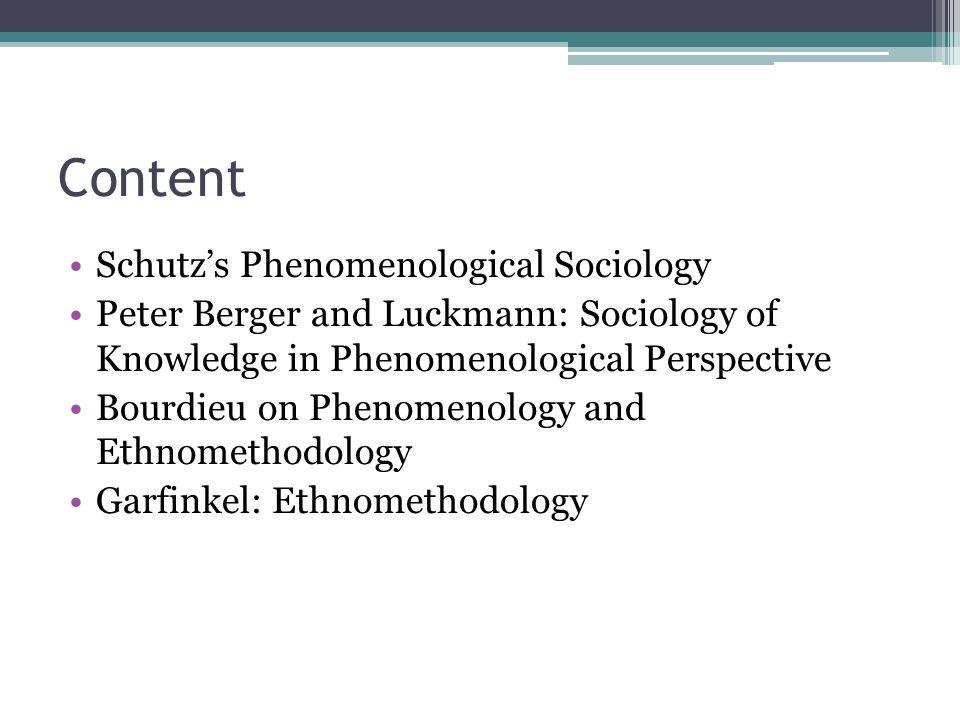 Content Schutz's Phenomenological Sociology
