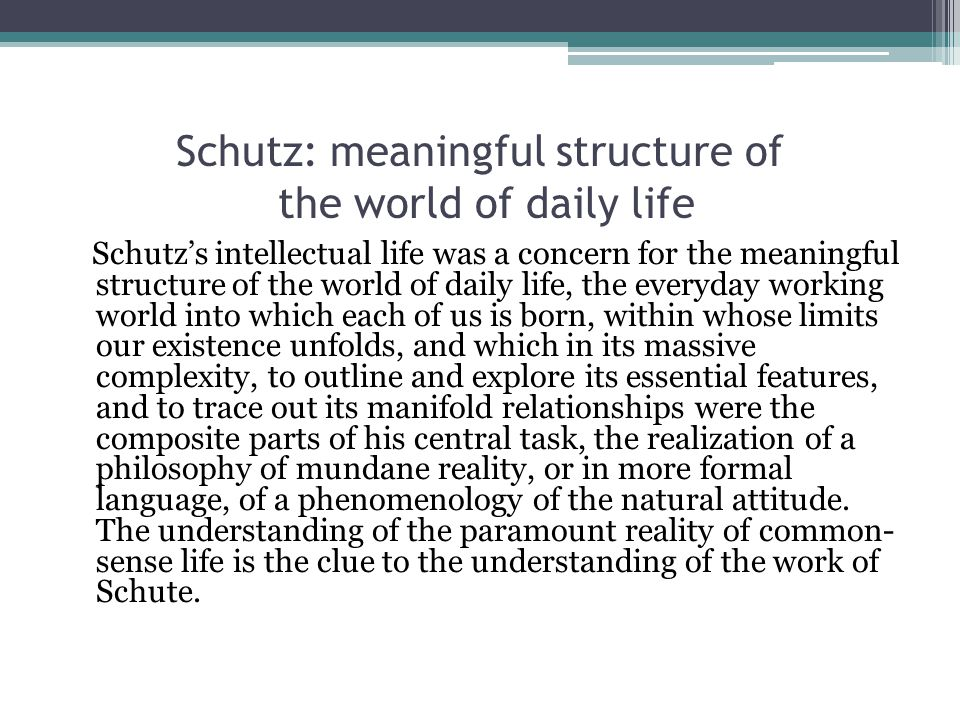 Schutz: meaningful structure of the world of daily life