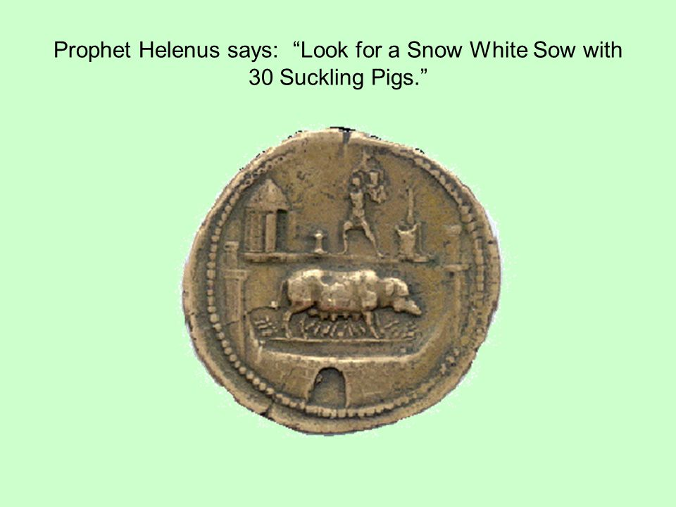 Prophet Helenus says: Look for a Snow White Sow with 30 Suckling Pigs