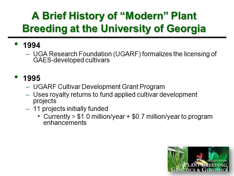 A Brief History of Modern Plant Breeding at the University of Georgia