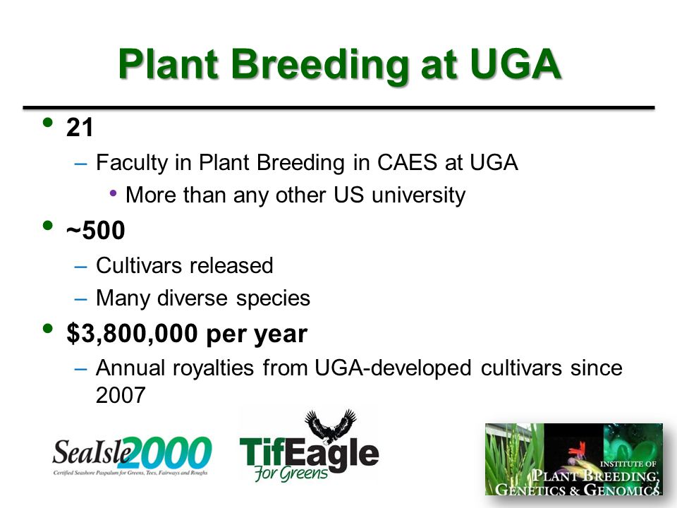 Plant Breeding at UGA 21 ~500 $3,800,000 per year