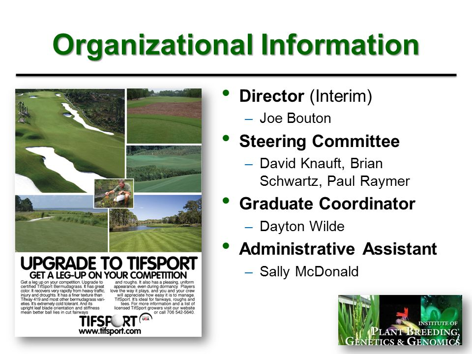 Organizational Information