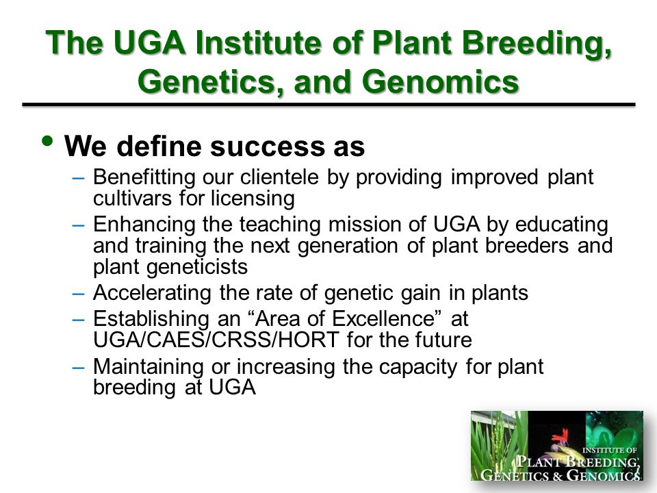 The UGA Institute of Plant Breeding, Genetics, and Genomics