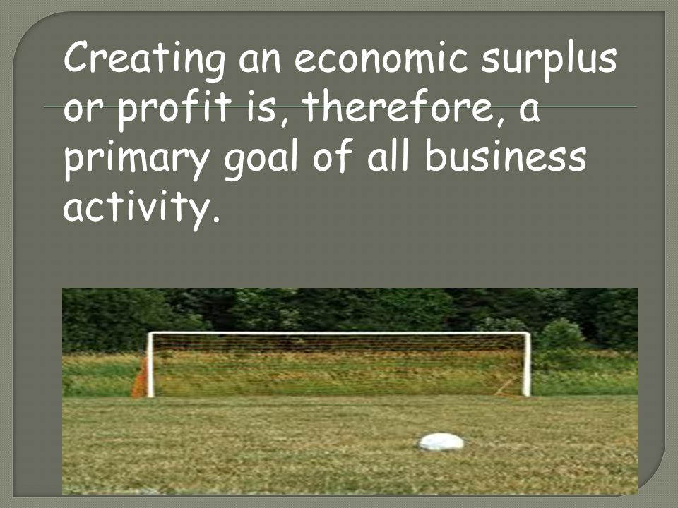 Creating an economic surplus or profit is, therefore, a primary goal of all business activity.