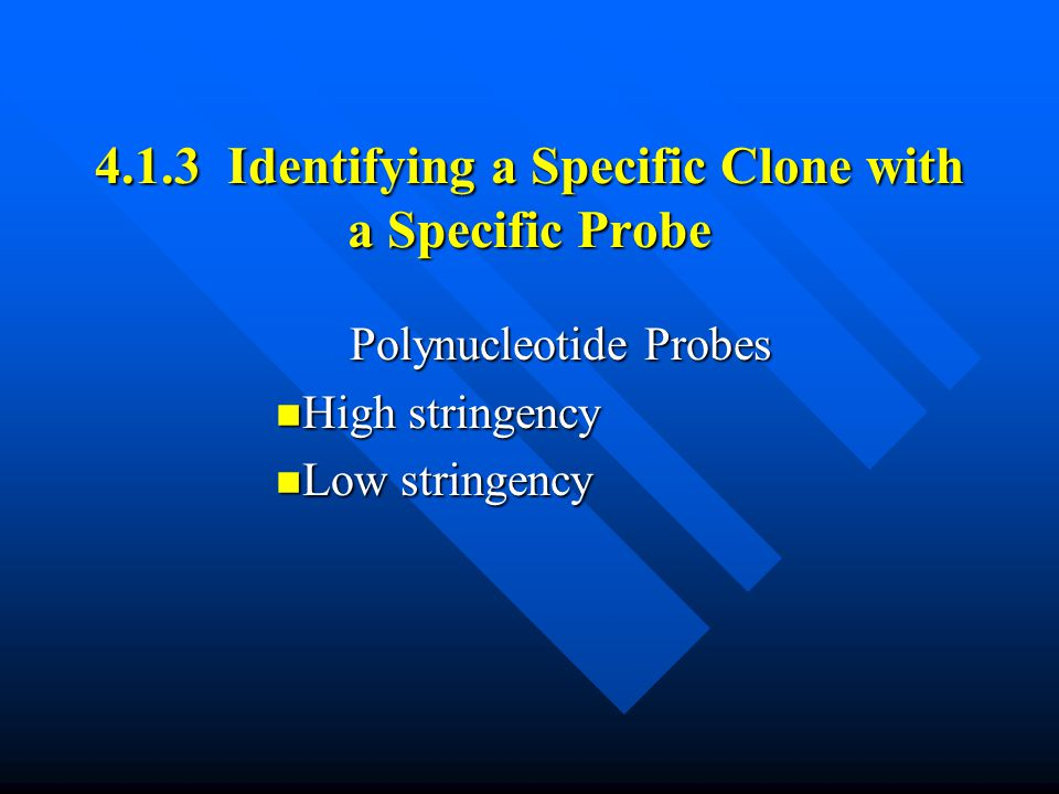 4.1.3 Identifying a Specific Clone with a Specific Probe