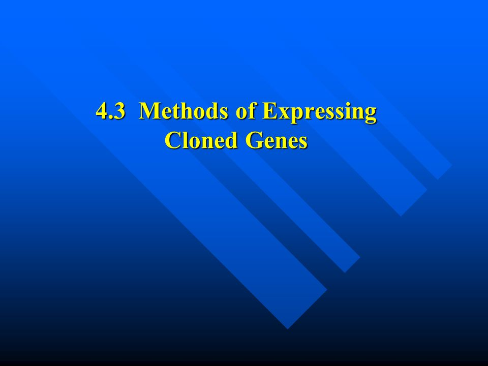 4.3 Methods of Expressing Cloned Genes