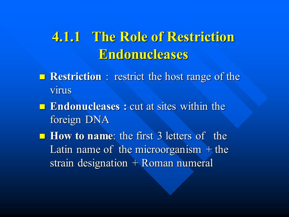 4.1.1 The Role of Restriction Endonucleases