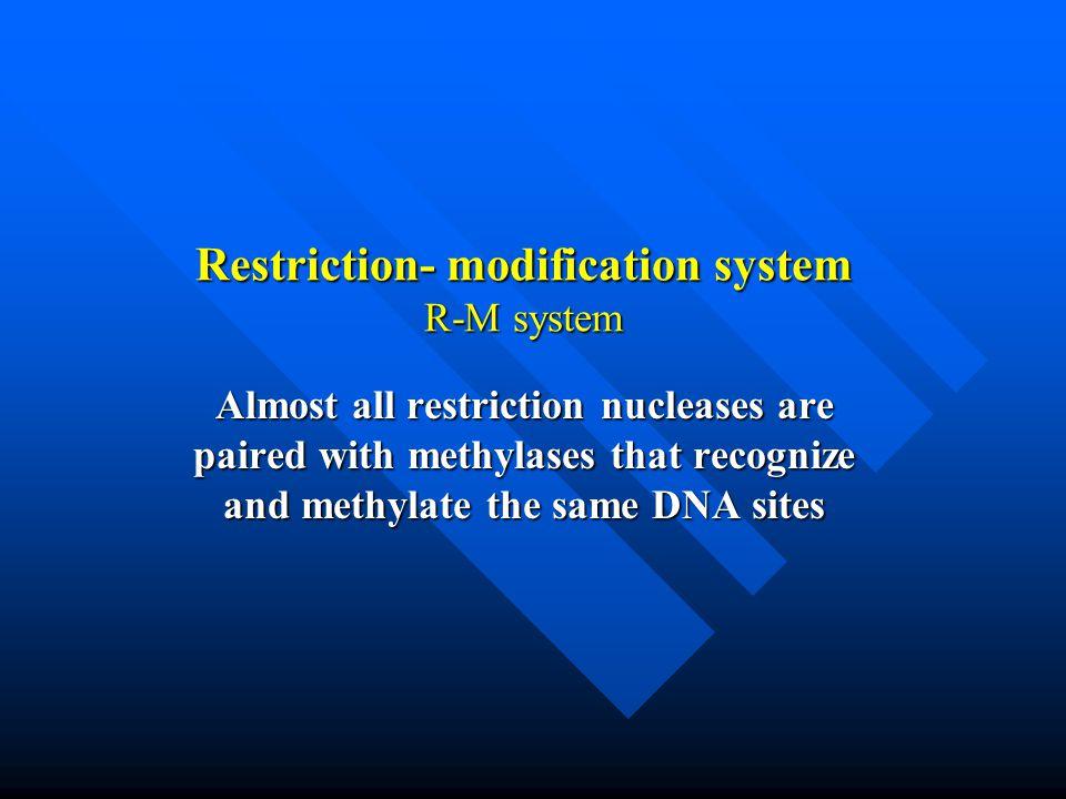 Restriction- modification system R-M system