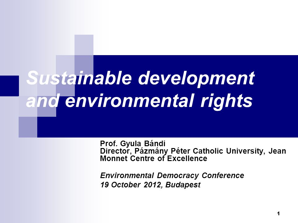 Sustainable development and environmental rights