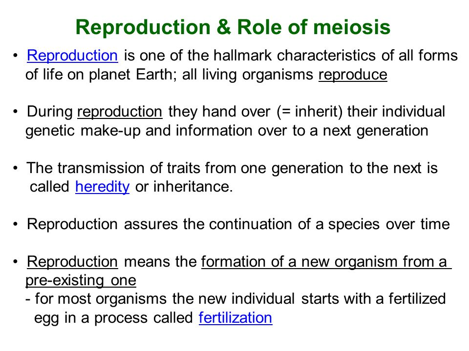 Reproduction & Role of meiosis