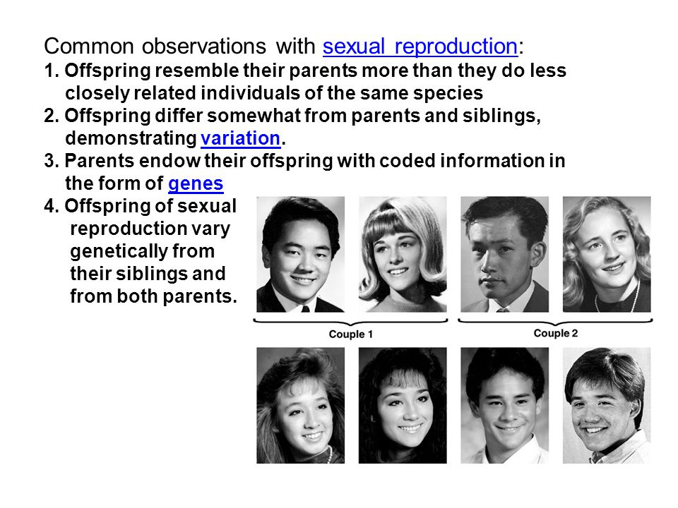 Common observations with sexual reproduction: 1