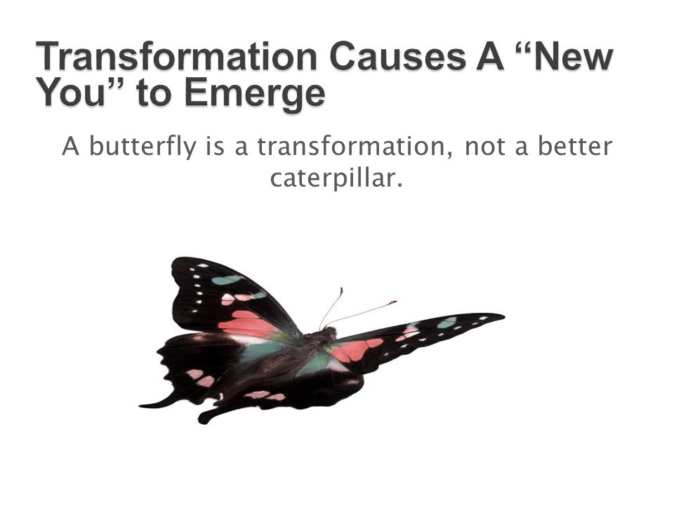 Transformation Causes A New You to Emerge