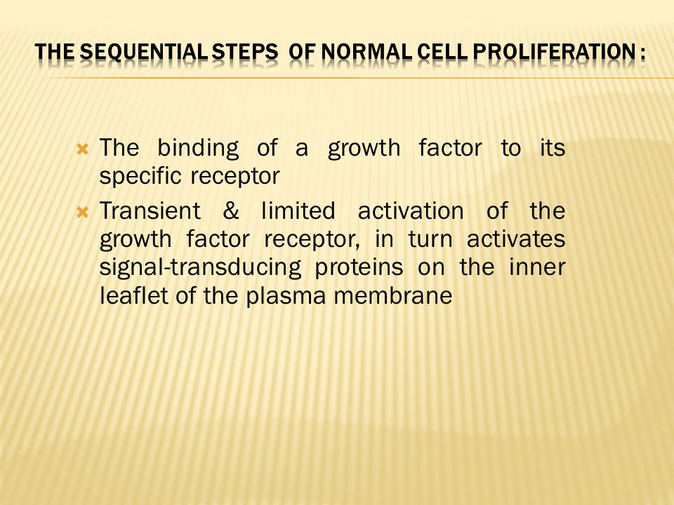 The sequential steps of normal cell proliferation :
