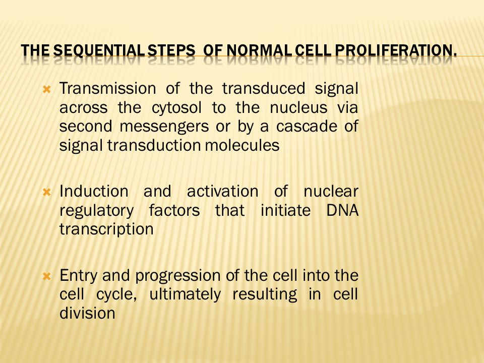The sequential steps of normal cell proliferation.