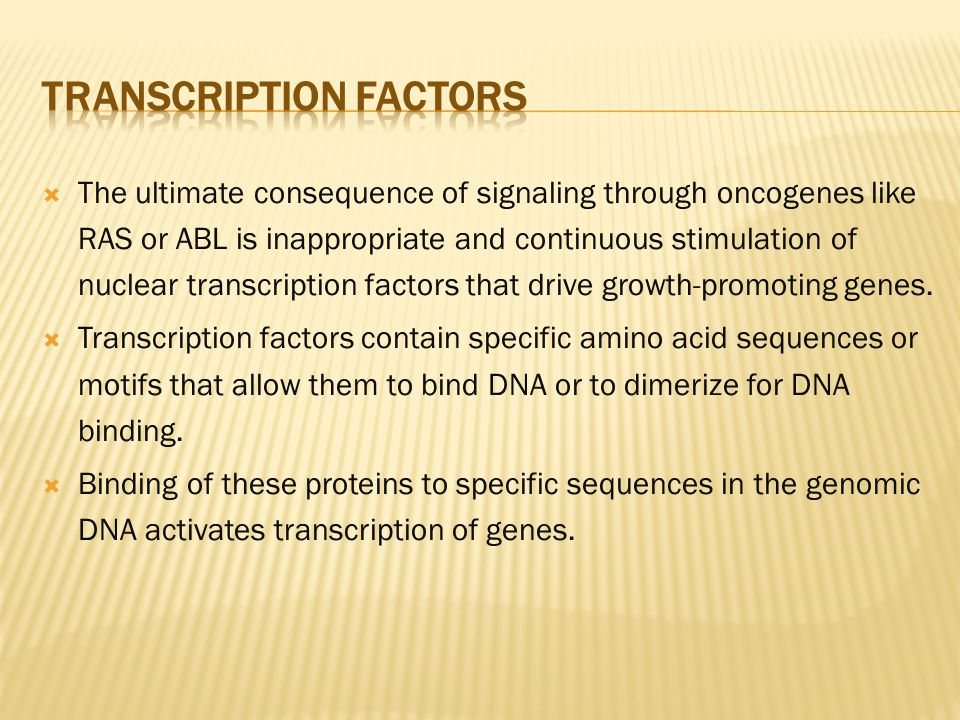 Transcription Factors