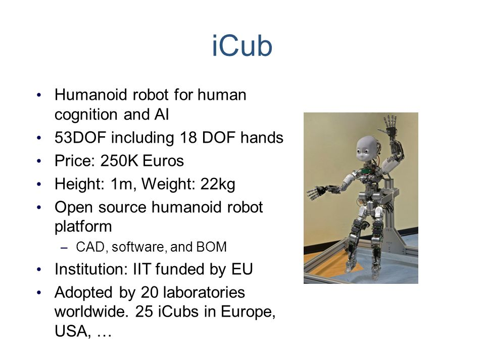 iCub Humanoid robot for human cognition and AI