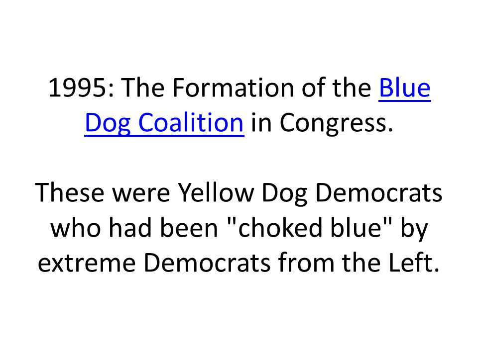 1995: The Formation of the Blue Dog Coalition in Congress