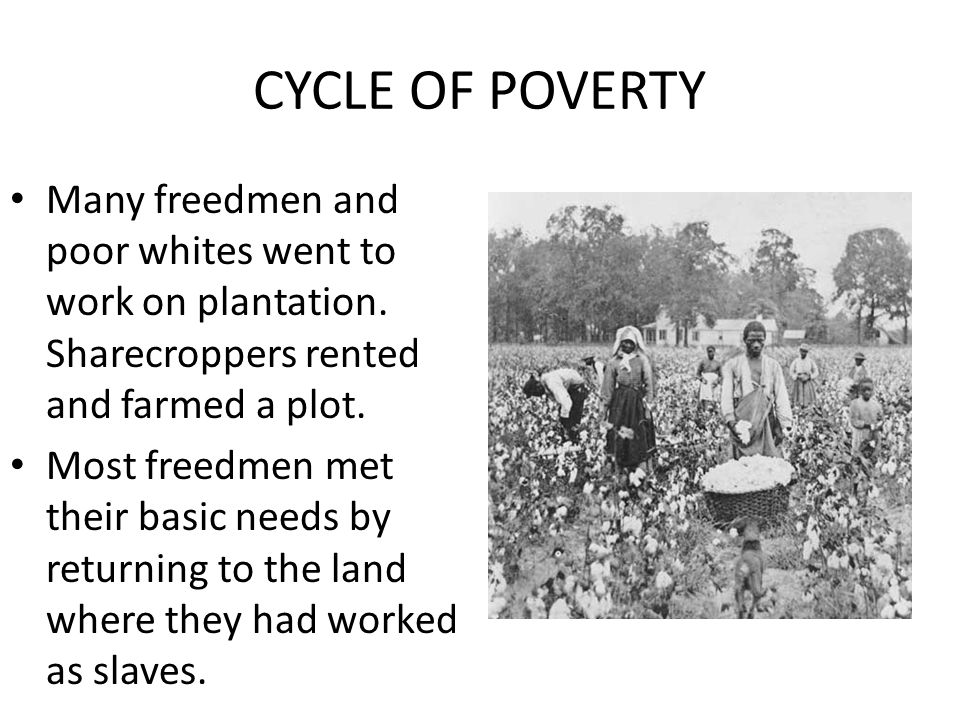 CYCLE OF POVERTY Many freedmen and poor whites went to work on plantation. Sharecroppers rented and farmed a plot.