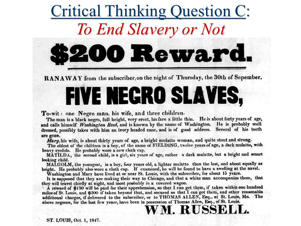 Critical Thinking Question C: To End Slavery or Not