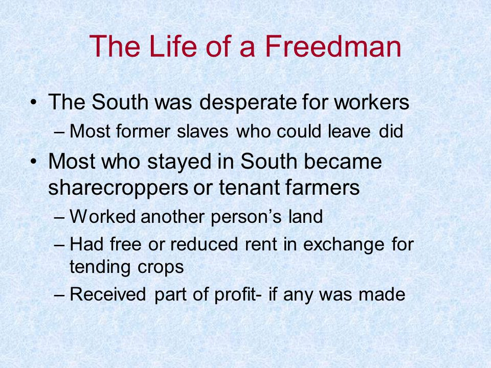 The Life of a Freedman The South was desperate for workers