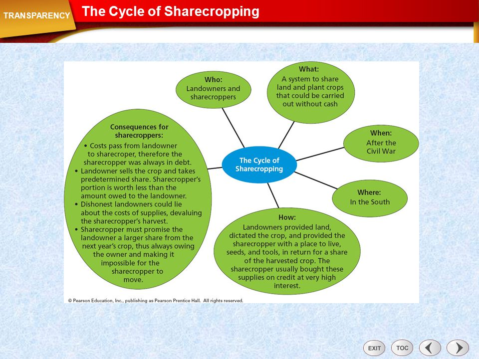 Transparency: The Cycle of Sharecropping