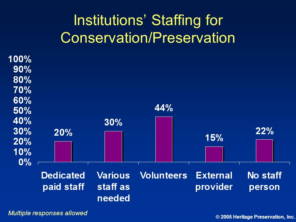 Institutions' Staffing for Conservation/Preservation